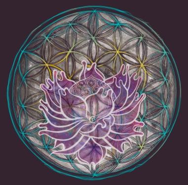 seed of life moon flower lotus